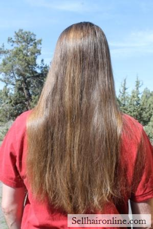 Selling15 Inches Chestnut Hair