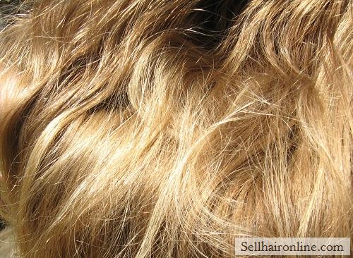 All Natural Beautiful Virgin Blond Hair For Sale