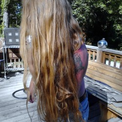 ROCK STAR HAIR: Beautiful Thick Wavy Virgin Golden-Strawberry Blond Man Hair For Sale