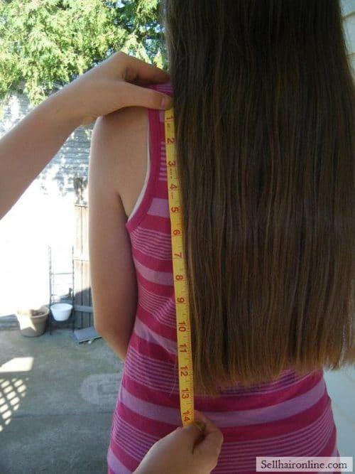 Virgin Medium Brown Hair For Sale