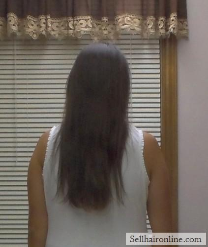 "14-15\"" of Beautiful, Virgin Dark Brown Hair For Sale"