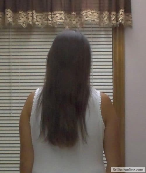 "14-15"" of Beautiful, Virgin Dark Brown Hair For Sale"