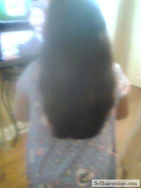 Hispanic Virgin Dark Drown Hair For Sale