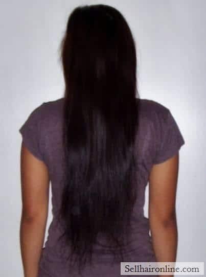 """14\"""" of VERY HEALTHY straight, dark brown hair"""