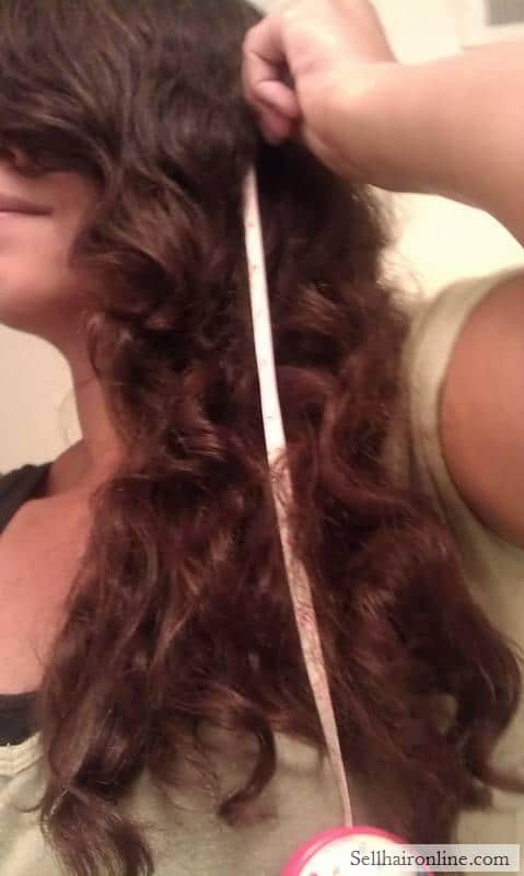 12 inches of naturally red highlighted medium brown hair for sale.