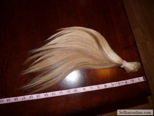 very long beautiful blond hair ponytail for sale