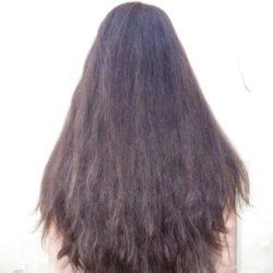 virgin chestnut hair