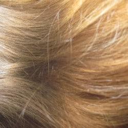 long stright dirty blound hair