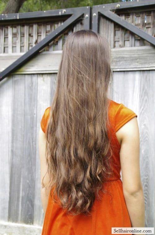 non-layered, virgin, dark brown hair